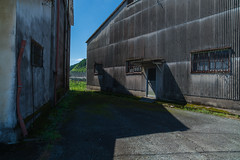 Dog playing ball. (Yasuyuki Oomagari) Tags: slate warehouse shadow light dog ball country countryside composition texture rural nikon d850 zeiss distagont2821 japan kyushu kumamoto landscape 日本 九州 熊本県 コンポジション 光 影 犬 ボール ドア door ngc