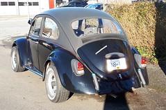 1969 Volkswagen Beetle (Foden Alpha) Tags: volkswagen beetle kafer bug fn815n 419207