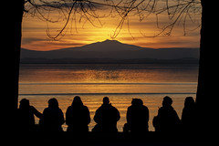 L'attesa (Cristiano Pelagracci) Tags: nature sunset silhouette umbria landscape paesaggio paesaggi ombre amiata italy trasimeno lak lake lago