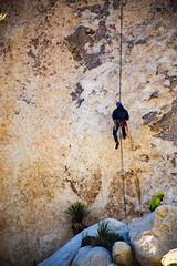 Joshua Tree #3 (Alan Headland) Tags: joshuatree desert trees sand rocks mountains sky climbing cliff cliffface mountaineering california usa rockclimbing extremesport