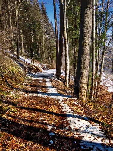 Schönmünzach, Höhenweg
