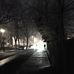 Das Wetter ist ein Fall für die X Akten 🐸👑 (Froschkönig Photos) Tags: aktex xfiles nebel fog monday montag street strasse mulder scully magdeburg