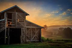 Backlit Barn (travis.daldy) Tags: barn clouds farm grass hills landscape nsw sunrise sun