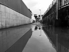 Tivoli Park despues de la lluvia / wedi'r glaw (Rhisiart Hincks) Tags: ale passage dubhisgeal dubhisbán gwennhadu glav rain fearthainn báisteach glaw lluvia grancanaria playadelinglés water dŵr uisge faileas uisce dour scáil adsked reflection adlewyrchiad duagwyn bw blancoynegro