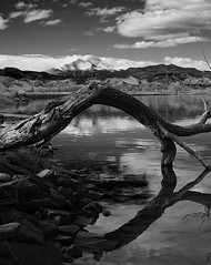 allTheAngles (blancopix) Tags: angles nature unique tree lake mountains sky clouds rocks bw