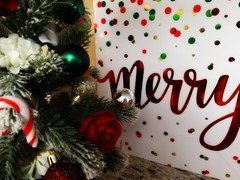 Merry (e r j k . a m e r j k a) Tags: pennsylvania kenmawr robinson home holidays christmas whimsy erjk