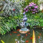 Allan Gardens Conservatory ~ Toronto Ontario - Canada thumbnail