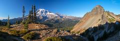 Pinnacle Saddle (Laura Jacobsen) Tags: mountains mtrainier mtrainiernationalpark pinnaclesaddle washington