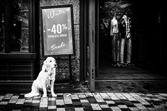 Sale!... (Sean Bodin images) Tags: streetphotography streetlife seanbodin strøget streetportrait københavn købmagergade people photojournalism photography everydaylife enhyldesttilhverdagen copenhagen citylife candid city citypeople denmark documentary sale