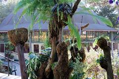 San Francisco Zoo 639 (Michael Fraley) Tags: carousel