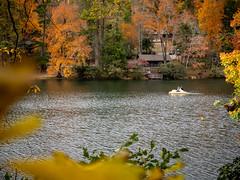 20181104-161339-042 (JustinDustin) Tags: 2018 attraction autumn blairsville fall ga georgia nga northamerica northgeorgia seasonal us usa unitedstates vogelstatepark year