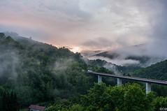 Bridge in the morning - Saint-Sernin-sur-Rance (Aveyron, France) (S C) Tags: bridge france aveyron saintserninsurrance