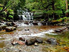 Russell Falls (annewilson12) Tags: tasmania australia russellfalls waterfalls water rocks travel travelphotography