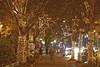 Lights of Hope @ St. Paul