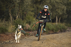 Campionat Catalunya Múixing Terra (canicrosslfv) Tags: campeonat catalunya muixing mushing bikejor cani canicross scooter ds1 ds2 dr4 dogs