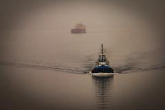 On her way (langdon10) Tags: canada quebec stlawrenceriver calm fog mist ship snow tugboat