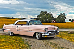 Cadillac Sedan DeVille 1956 (8133) (Le Photiste) Tags: clay generalmotorscompanygmcadillacmotorcardivisiondetroitmichiganusa cadillacsedandeville cc 1956 cadillacseries62model566239dxsedandevillefisherbody simplypink oddvehicle oddtransport rarevehicle americanluxurycar swedishseries skurupsweden sweden afeastformyeyes aphotographersview autofocus artisticimpressions alltypesoftransport anticando blinkagain beautifulcapture bestpeople'schoice bloodsweatandgear gearheads creativeimpuls cazadoresdeimágenes carscarscars canonflickraward digifotopro damncoolphotographers digitalcreations django'smaster friendsforever finegold fairplay fandevoitures greatphotographers groupecharlie peacetookovermyheart hairygitselite ineffable iqimagequality infinitexposure interesting inmyeyes livingwithmultiplesclerosisms lovelyflickr myfriendspictures mastersofcreativephotography niceasitgets photographers prophoto photographicworld planetearthbackintheday planetearthtransport photomix soe simplysuperb slowride showcaseimages simplythebest simplybecause thebestshot thepitstopshop themachines transportofallkinds theredgroup thelooklevel1red vividstriking wow wheelsanythingthatrolls yourbestoftoday oldtimer perfectview