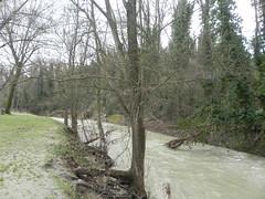 DSCN9937 (Gianluigi Roda / Photographer) Tags: springtime april 2013 creek creeks