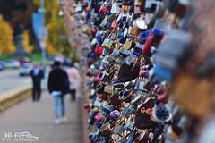 Lotsa Locks (Hi-Fi Fotos) Tags: pittsburgh pitt campus schenleypark bridge love locks art installation public message padlock combination key fence pedestrian walkway bokeh nikkor 105mm micro nikon d7200 dx hififotos hallewell