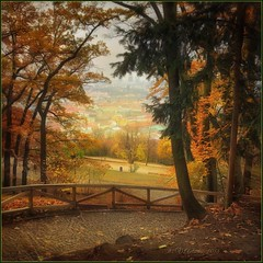 """from the series """"Walking in Prague.""""Golden autumn in Prague. (odinvadim) Tags: iphoneart landscape iphoneonly iphonex iphoneography specialist mytravelgram autumn painterlymobileart iphone snapseed evening travel artist sunset textured forest textures editmaster icolorama"""
