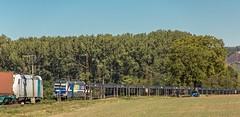 35_2018_09_27_Retzbach-Zellingen_6185_xxx_Rpool_mit_Containerzug ➡️ Gemünden_6193_824_Rpool_RTB_CARGO_mit_Autotransportzug ➡️ Würzburg (ruhrpott.sprinter) Tags: ruhrpott sprinter deutschland germany allmangne nrw ruhrgebiet gelsenkirchen lokomotive locomotives eisenbahn railroad rail zug train reisezug passenger güter cargo freight fret retzbachzellingen bayern maintal gemünden würzburg atlu boxx db dispo eloc egp evb öbb rhc rpool rtb vtlt 0425 0440 0445 1223 1251 6152 6185 es64u2 6182 6193 boxxpress ell hlg lkw mrce novelis pct railtraxx txlogistik walter wiener lokalbahnen logo natur outddor