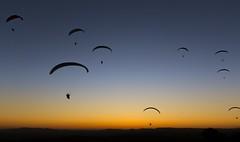 manila sunset (texaus1) Tags: manila sunset paragliding