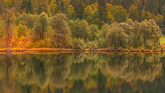 Autumn impression (hjuengst) Tags: weitsee bavaria bayern autumn herbst herbstfarben foliage fall fallcolors reflection reflektionen spiegelung lake see reitimwinkl ruhpolding