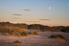 Golden Hour at Ainsdale (nickcoates74) Tags: ainsdale southport sefton coast seaside dunes marramgrass moon goldenhour sony a6300 ilce6300 affinityphoto