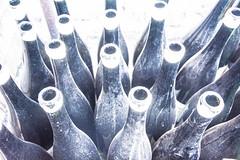 Leere Flaschen (Nihil Baxter007) Tags: flaschen bottles bottle flasche sekt sektflasche sektflaschen glass glas champagner schampus