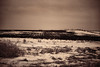 Winter Landscape (Dave Linscheid) Tags: farm rural country agriculture farmfield snow cold winter dirt soil butterfield watonwancounty mn minnesota usa