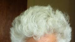 Crazy hair (Sandy Austin) Tags: panasoniclumixdmcfz70 sandyaustin massey westauckland auckland northisland newzealand hair prednisone curly