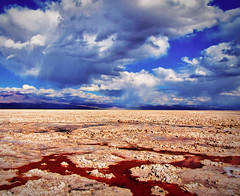 Red Salt Flats Argentina (Alexander H.M. Cascone [insta @cascones]) Tags: south america southamerica chile latinoamerica san pedro sanpedro sanpedrodeatacama atacama desert nature travel water clouds sky natural landscape blue beautiful view animal mountains salta argentina red salt flats colored coloration rocks rocky dirt mud
