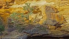 Around Mermaids Pool_2 (Tony Markham) Tags: tahmoorgorge cliffs sandstone cave overhang mermaidspool bargoriver