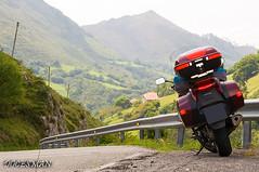 Galicia (DOCESMAN) Tags: moto bike motor motorcycle motorrad motorcykel moottoripyörä motorkerékpár motocykel mototsikl honda nt700v ntv700 deauville docesman danidoces galicia cantabrico