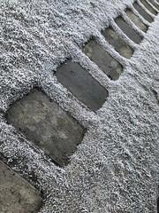 Sti -|- Path (erlingsi) Tags: erlingsi iphone erlingsivertsen sti path bergen frost møllendal