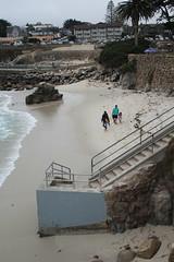 IMG_10937 (mudsharkalex) Tags: california pacificgrove pacificgroveca loverspointpark loverspointbeach beach