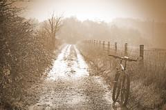 Going Home (olde worlde Hovis style) (ArtGordon1) Tags: mtb atb greenlane woodredonandwarliesestate essex countyofessex eppingforest marin rockyridge cycle cycleride cycling davegordon davidgordon daveartgordon davidagordon daveagordon artgordon1