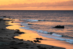 Morning Gold (alicecahill) Tags: sonya7r3 california usa landscape ©alicecahill sanluisobispocounty slocounty sunrise ca