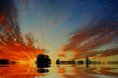Por de sol no campo (Zéza Lemos) Tags: faro campo portugal pordesol puestadelsol sunset selvagem sol natureza natur núvens entardecer anoitecer water algarve água aves vilamoura fotos photos capture