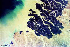 Parts of the vast Ganges delta. Original from NASA. Digitally enhanced by rawpixel.