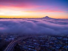 City Under the Clouds (www.mikereidphotography.com) Tags: seattle sunrise rainier fog clouds landscape city mountain mist sky