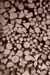 Brennholz (HeiAld) Tags: wood sonnenenergie schweiter scheiterbeige holzlager esche ahorn ofenfertig co2neutral