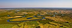Snake (Jhaví) Tags: deltadelokawngo botswana africa river rio kawango nature trip travel viajar volar water wild safari delta okawango botsuana