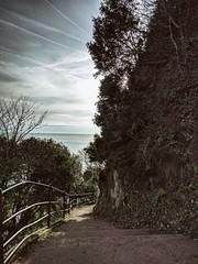 Descent (ancientlives) Tags: dawlish devon england uk europe walking walkingthedog coast coastalpath coastline coastal path swcoastalpath bluesky morning sunshine steps monday january 2019 winter southwest seaside seascape