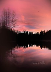 Rosy Morning (jeanmarie's photography) Tags: clouds moody colors sky reflection pink landscape water lake sunrise jeanmarieshelton