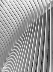 Rising Up (allentimothy1947) Tags: blackandwhite newyorkstate architecture cloudy memorial newyorkcity oculu people rain streets subway transportationbuildings worldtradecenter black white new york state wings bw contrast beauty windows oculus world trade center ny september 11 2018 city buildings graphic design santiago calatrava architect