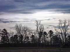 Cloudy Day. (dccradio) Tags: lumberton nc northcarolina robesoncounty outdoor outside outdoors park citypark northeastpark drraymondbpenningtonathleticcomplex penningtonathleticcomplex january winter saturday saturdayafternoon afternoon goodafternoon nature natural tree trees branch treebranch branches treebranches treelimb treelimbs sony cybershot dscw230 sky overcast cloudy clouds landscape scenic beauty beautiful fence chainlinkfence