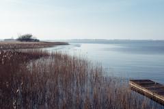 (Sietske de Graaf) Tags: netherlands winter serene sloten slotermeer mood lake preset nature rni friesland filmsimulation rnifilms fryslân presetkodake200 reallyniceimages