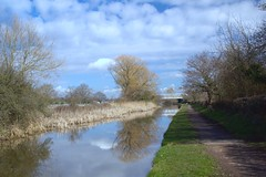 Along the Tow Path (TERRY KEARNEY) Tags: shropshireunioncanal cheshire croughtoncheshire backfordcheshire reflections watercourse waterway water canal canoneos1dmarkiv canon trees towpath path pathway clouds skyline sky bridge daylight day explore europe england fields kearney landscape nature oneterry outdoor sunshine terrykearney rural wildlife 2019 hamlet village