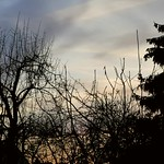 P2240744 vue du ciel 01 (aube lever de soleil nuage rouge film accéléré durée réelle 55') Cergy thumbnail